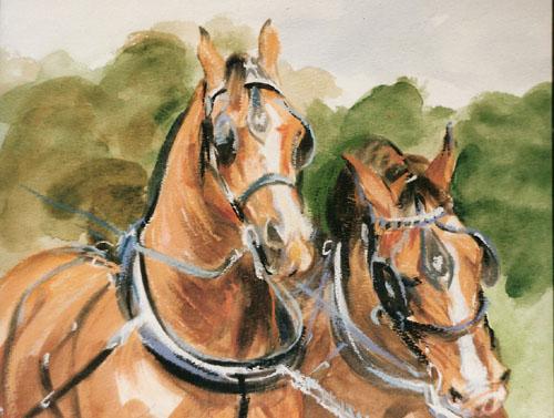 konie w zaprzegu, 23x25.jpg