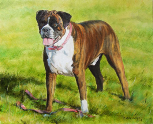 Portret psa, olej- plotno 36x48.jpg
